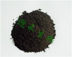 洋葱种植有机肥施用